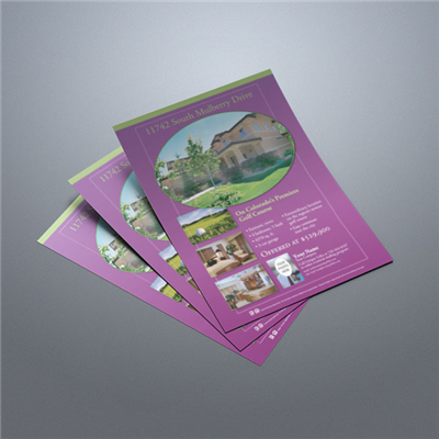 Property Flyer 011 (Purple)