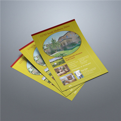 Property Flyer 011 (Gold)