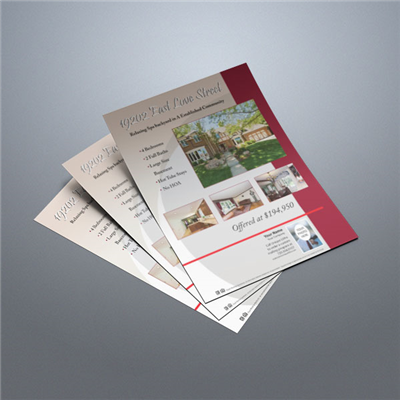 Property Flyer 001