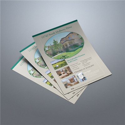 Property Flyer 011 (Taupe)