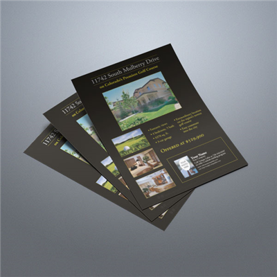 Property Flyer 010