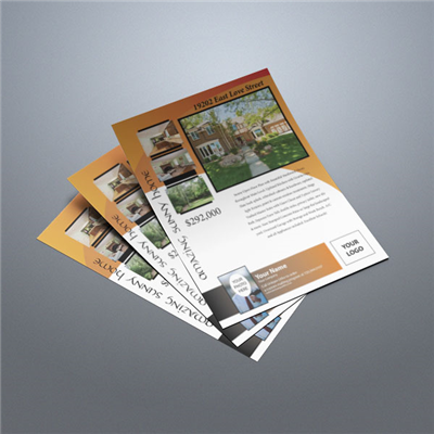Property Flyer 004